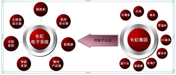 四川长虹电子系统有限公司概况