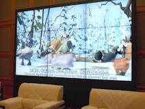 江阴市国际会展中心