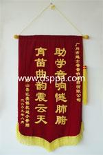 2009年阳山县江阴镇授予的锦旗
