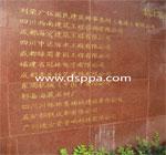 都江堰中国海外新建特殊教育学校-2