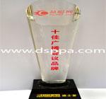 2012年度音响灯光行业十佳广播会议品牌-奖牌