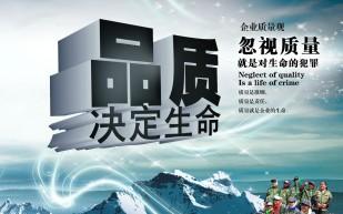 深圳市源微创新实业有限公司(新金速存储技术公司)(金速KingFast)说明——品质观:品质改变世界