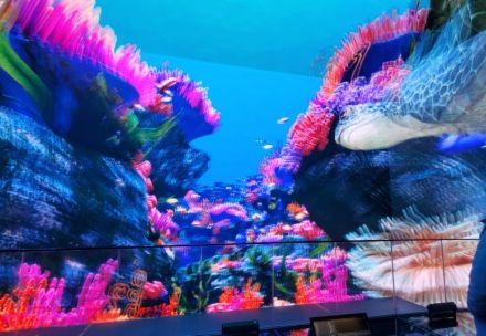 科视Christie 潘多拉魔盒服务器为青岛市的 3D 沉浸式可视化项目提供令人叹为观止的视觉体验