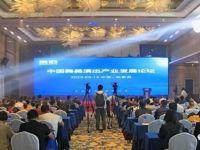 中国舞美演出产业发展论坛 •张家界站