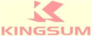 金信安Kingsum