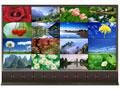 ZDL55H&ZDL55X-55寸系列LCD液晶拼接