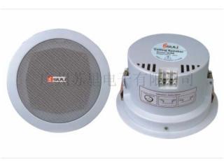 CH-704W-CH-704W吸顶天花扬声器