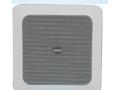 DSP551-天花扬声器