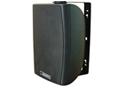 DSP6061B-常规型壁挂音箱
