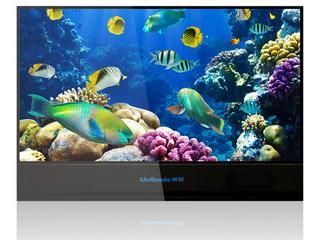 高清-LED裸眼3D电视(110寸)