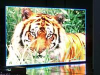 LM-P16-全彩户外广告显示屏