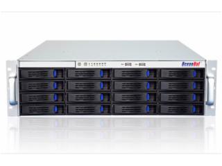 SW-3016/L,SW-3024/L-歐迅特SW系列-企業級網絡存儲系統