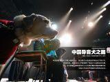 中國導盲犬之困