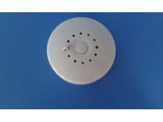 WG-YW-1-南京小機房溫度報警器