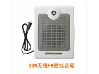 DCS-FMBG01-遠距離無線壁掛音箱