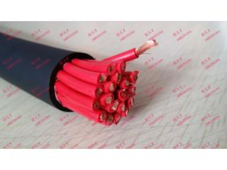 ZR-SYFFR 14×2.5-金博電纜