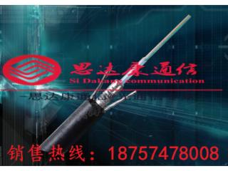 GYTS-GYTS144芯管道光纜