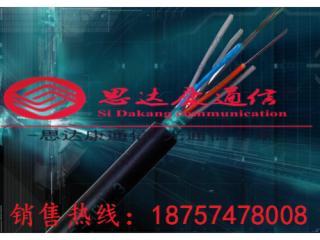 GYTS-GYTS12芯管道光纜
