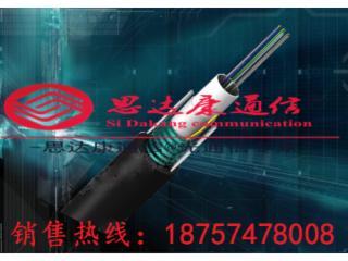 GYTS-GYTS8芯管道光纜