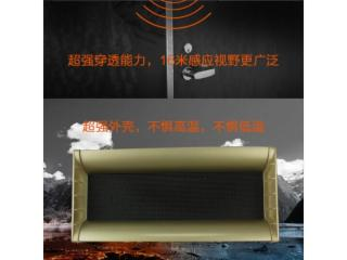 SP615A-室外語音防水感應音箱