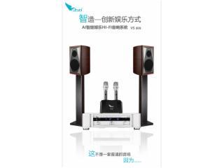 VS2.0-SISO音响卡拉OK音响套装音箱专业功放唱歌点歌机家庭影院