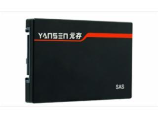 SAS-X-XXX-元存SAS服務器硬盤(寬溫級固態硬盤)