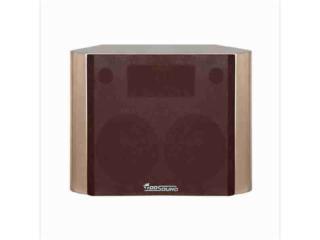 CIN28-供應TOOSOUND/拓聲 CIN28 影院揚聲器