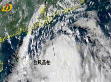 台风来了,智能解决方案如何建立应急防护体系