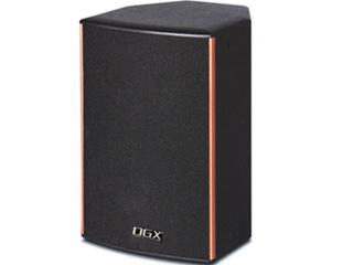 DT-8210-10寸二分频音箱