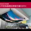 LG OLED开放型曲面拼接显示器-55EF5C图片
