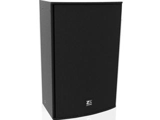 R15P-15寸兩分頻音箱