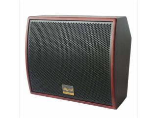WS-08-麦纳专业会议音箱