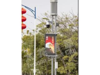 P2.94 53寸-P2.94双面高清LED灯杆屏-专业智慧灯杆屏厂家