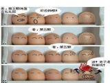 广东科学中心P2.5显示屏