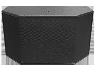 S-210-双10寸点声源音箱