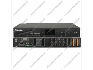 TS-288-TS-288 插卡式可编程数字音频管理矩阵