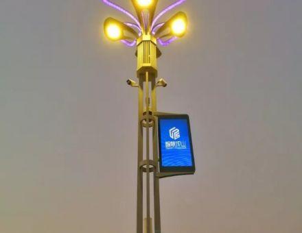 太龙智显专业LED灯杆屏和常规灯杆显示屏实际运用效果对比