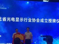 创凯智能受邀参加湖北省光电显示行业协会授牌仪式暨产品交流会