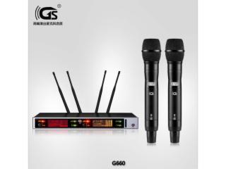 真分集无线麦克风一拖二无线话筒g660-真分集无线演出麦克风演出 会议 KTV 专业话筒品牌