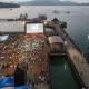 8K微美影像呈現細膩水景 呼吁正視水資源圖片