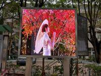 浩博百星|广州大学生活区户外P5全彩显示屏