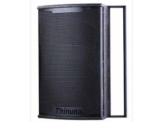 T-8-兩分頻8寸專業音箱