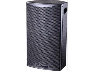 T-10-两分频10寸专业音箱