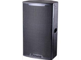 T-12-两分频12寸专业音箱