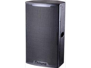 T-15-两分频15寸专业音箱