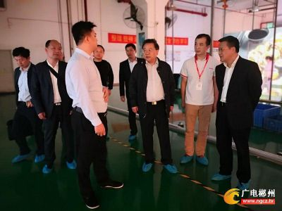 郴州市委書記易鵬飛一行蒞臨巴科光電考察指導