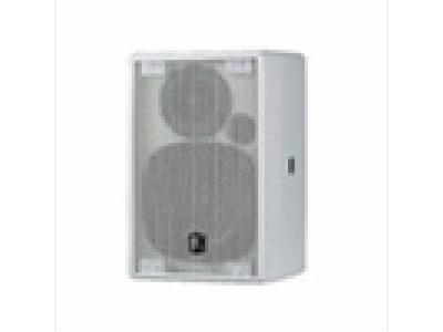 SAK4.1-SAK 內置2分頻4英寸全頻揚聲器