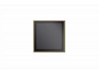 H1617W2O-非制冷长波红外探测器
