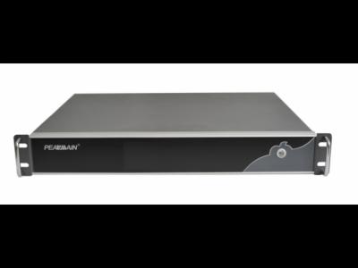 PE5061-MRSP-产品系列   监控中心主控软件系列 ----流媒体网关服务器