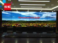 長虹 LCD 案例